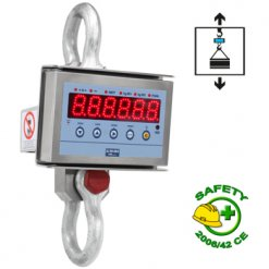 Dini Argeo MCW09 Professional Single Security Crane Scale Series_01